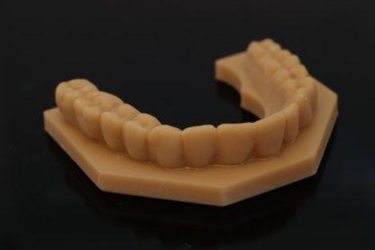 DruckWege dental modeling uv resin
